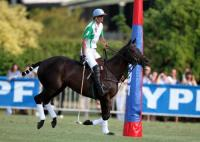 Final La Dolfina vs Ellerstina 1 chukker