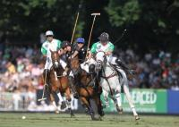 Final La Dolfina vs Ellerstina 4 chukker
