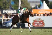 Final La Dolfina vs Ellerstina  8 chukker