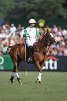 Final La Dolfina vs Ellerstina   3 chukker