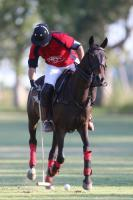 Final La Manea Orange vs La Manea Polo club