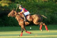 Polo Tour La Aguada  2012