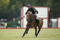 Final Dolfina vs Ellerstina-juego