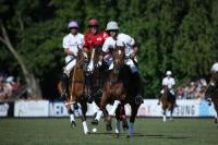 Ellerstina vs Washington
