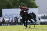 Ellerstina vs La Irenita