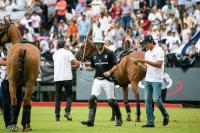 Final Dolfina vs Ellerstina Juego