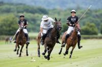 Habtoor Polo vs RH