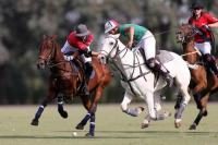 Final Localiza vs Bijaipur Polo