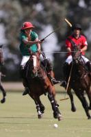 Castle Bijaipur  vs  Polo 4 peace