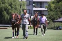 Polo tur 2011 - Tom Tailor vs Saint Mesme