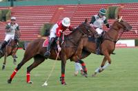 Polo tur  2011  Final Amadeus vs Fernet Park